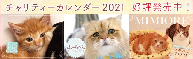 可愛い猫たちがいっぱい!2021年チャリティーカレンダー
