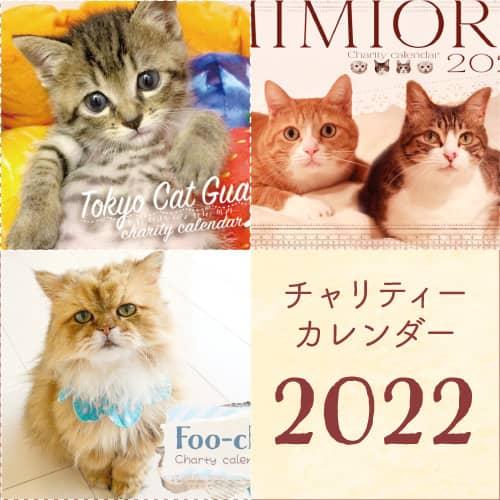 可愛い猫たちがいっぱい!2022年チャリティーカレンダー