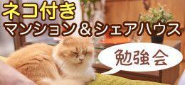 猫付きマンション&シェアハウス勉強会
