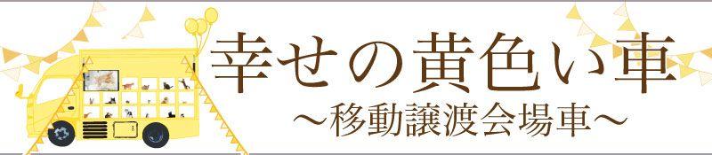 幸せの黄色い車〜移動譲渡会場車〜