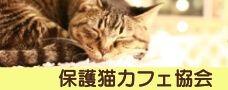 保護猫カフェ協会