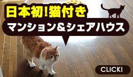 猫付きマンション&猫付きシェアハウス